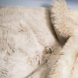 Fausse fourrure au mètre Tissu fausse fourrure super doux beige – 1551 Beige Frost