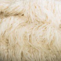 Fausse fourrure au mètre Tissu fausse fourrure agneau de Mongolie crème – 2102 Cream